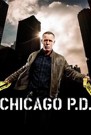 芝加哥警署 第五季